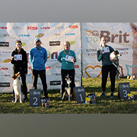 Photos from agility qualification tests - rewarding